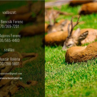 Szarvasi Arborétum Hunting Co. - Hungary