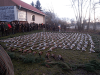 Solti Vécsey Hunting Co - Hungary
